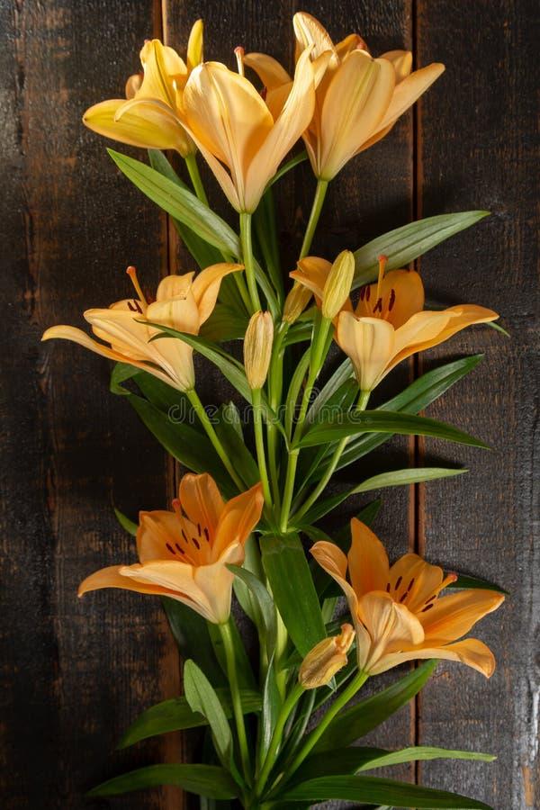 El ramo sensual de flores anaranjadas hermosas de los lirios se cierra encima del top foto de archivo libre de regalías