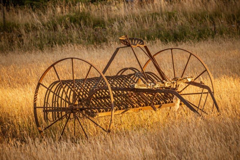 El rastrillo de heno antiguo en los granjeros coloca durante una puesta del sol de oro foto de archivo libre de regalías