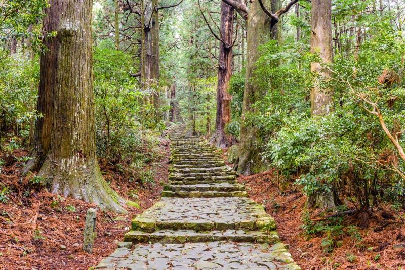 El rastro de Kumano Kodo, un rastro sagrado en Nachi, Japón imágenes de archivo libres de regalías