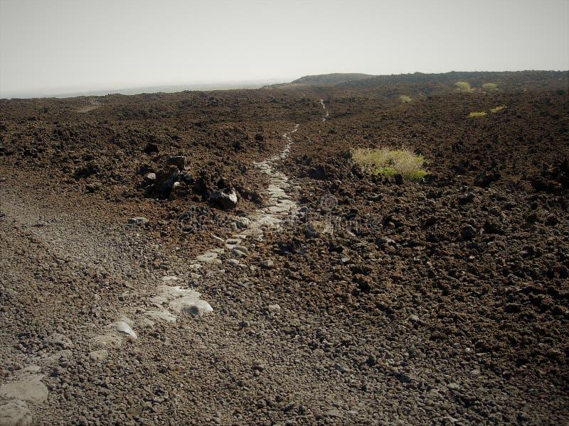 El rastro hawaiano antiguo de la pesca de las piedras lisas de la playa puso a través de campo de lava áspero en las montañas imagen de archivo