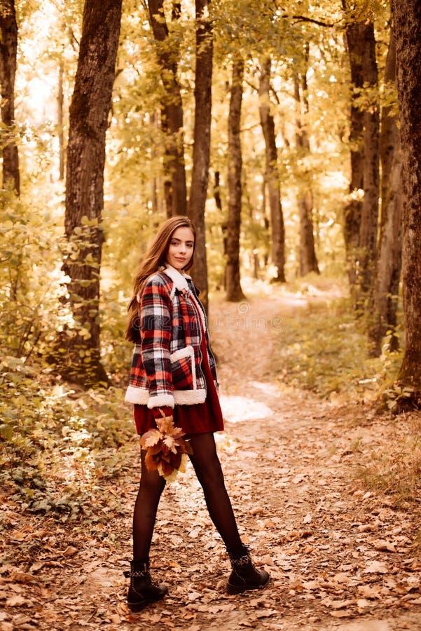 El ?rbol del oto?o sale del fondo del cielo ?rboles y hojas amarillos Disfrutar del buen tiempo Retrato al aire libre del otoño d fotos de archivo libres de regalías
