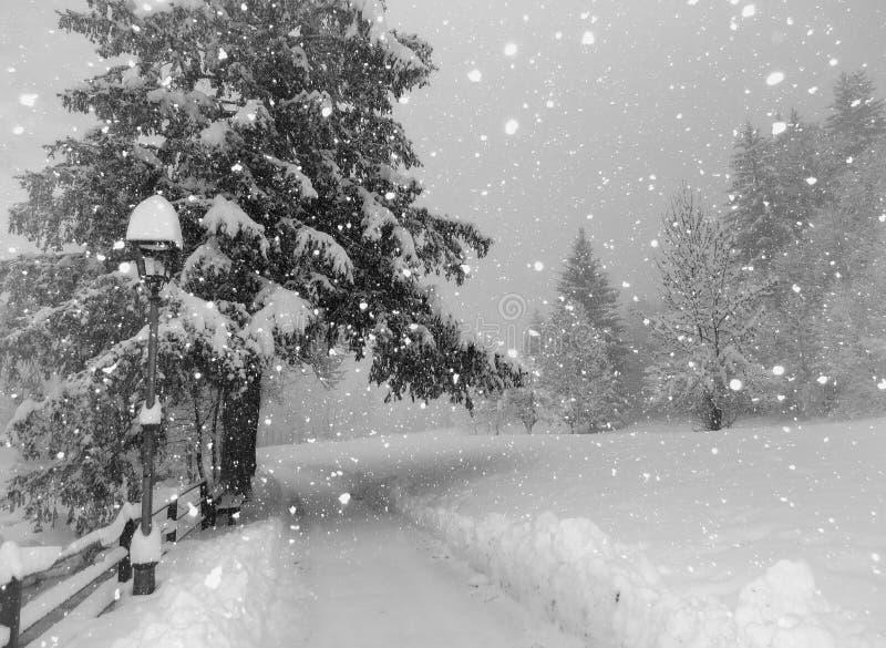 El recorrer en la nieve foto de archivo libre de regalías
