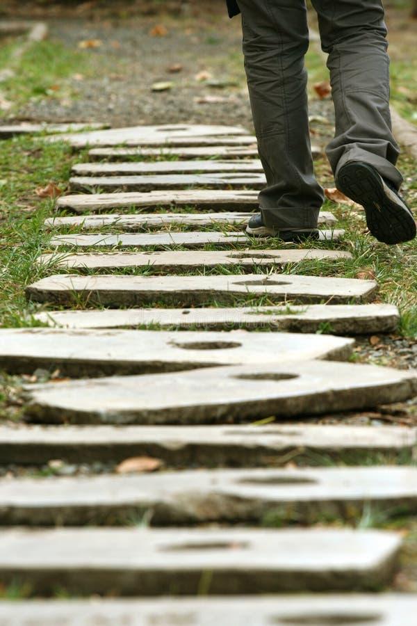 El recorrer en la senda para peatones de madera fotografía de archivo