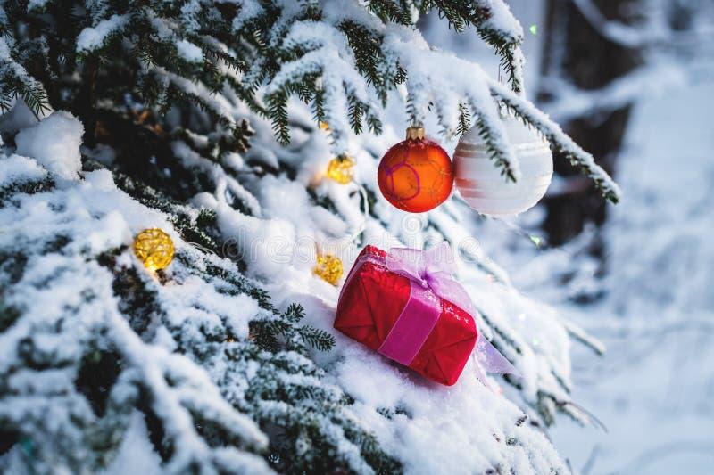 El regalo rojo del Año Nuevo del primer con una cinta blanca al lado de los juguetes de la Navidad en las ramas de un árbol de na imágenes de archivo libres de regalías