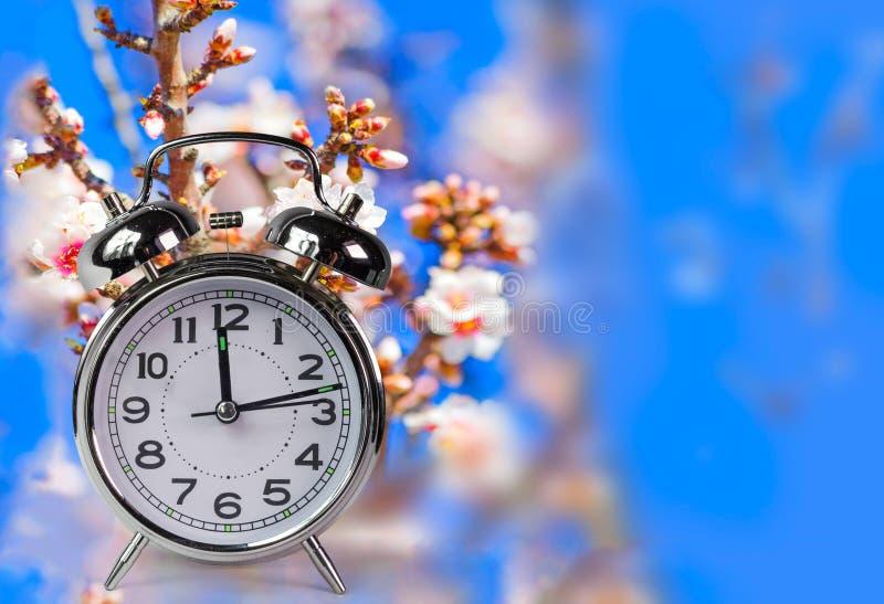 El reloj de tiempo de primavera florece el espacio para su texto, fondo de la naturaleza imágenes de archivo libres de regalías