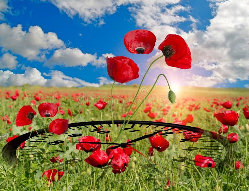 El reloj de tiempo de primavera florece el espacio para su texto, fondo de la naturaleza foto de archivo libre de regalías