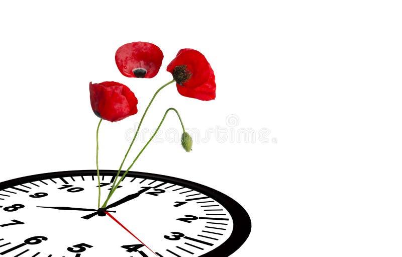 El reloj de tiempo de primavera florece el espacio para su texto, fondo de la naturaleza imagen de archivo