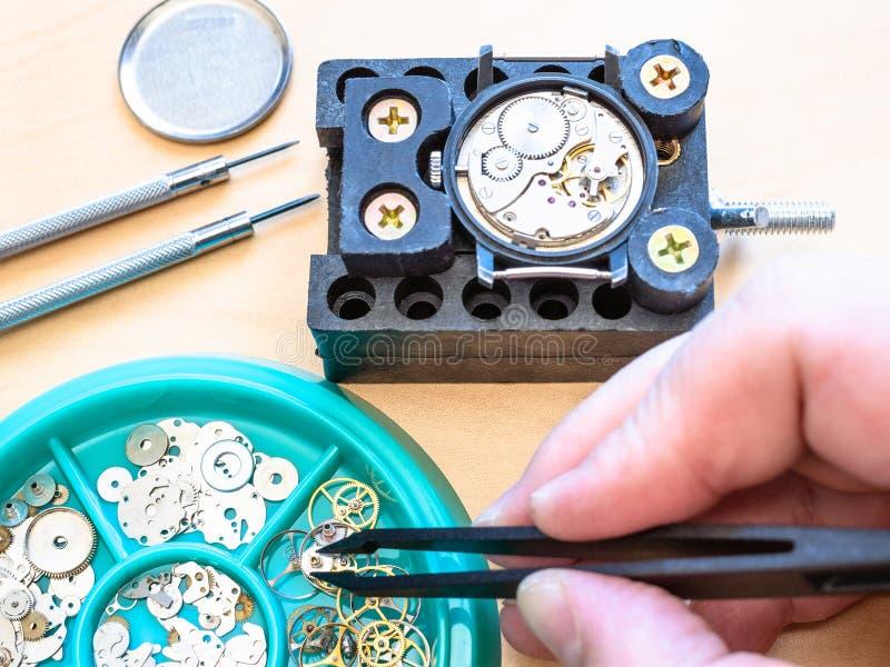 El relojero coge el engranaje para el reloj mecánico fotos de archivo