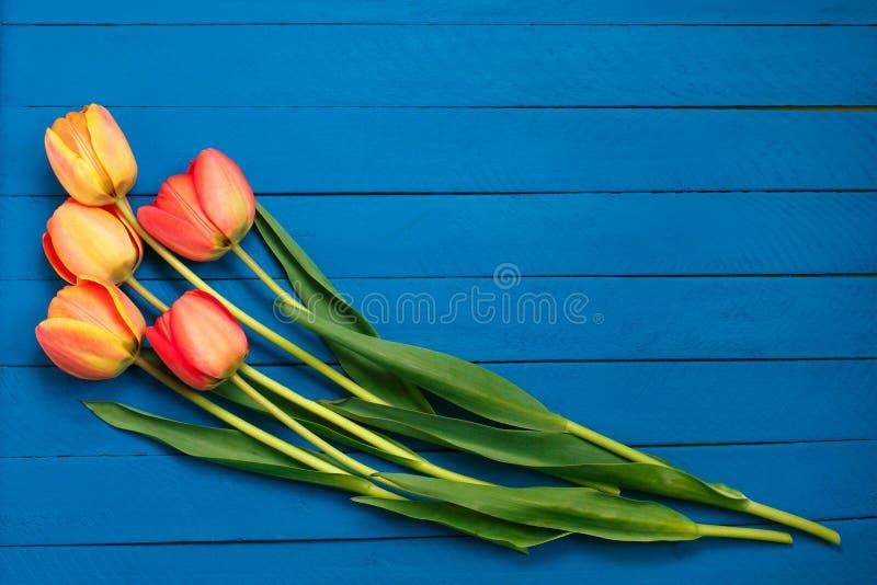 El resorte florece el ramo Tulipanes hermosos en fondo brillante de madera r?stico de los azules turquesa del color Endecha plana imagen de archivo