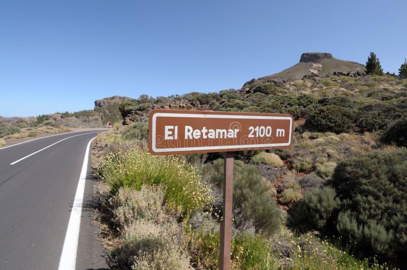 EL Retamar, Tenerife della montagna immagine stock libera da diritti