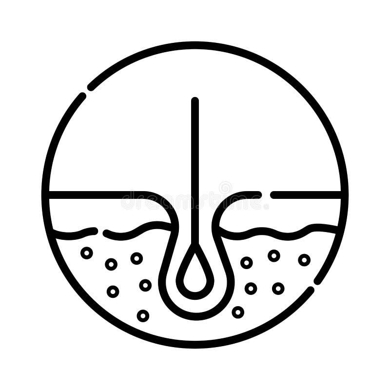 El retiro humano aislado icono del pelo crece el bulbo médico stock de ilustración