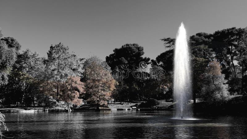 El Retiro parkerar springbrunnen arkivfoton