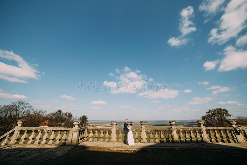 El retrato de boda de la novia feliz y del novio elegantes del recién casado que presentan en la terraza de piedra vieja en prima fotos de archivo