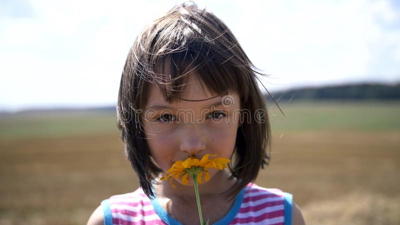El retrato de una chica joven huele una flor y miradas en la cámara imagen de archivo libre de regalías