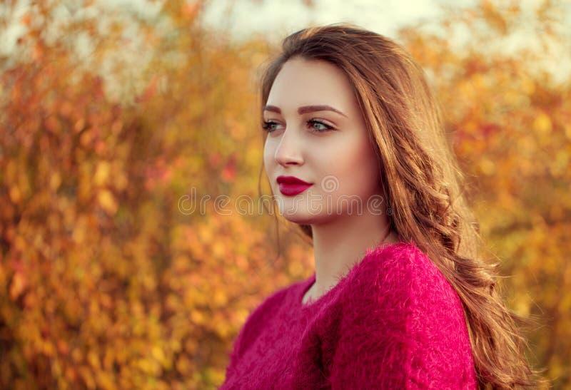 El retrato de una mujer atractiva joven con el pelo marrón largo goza imagenes de archivo