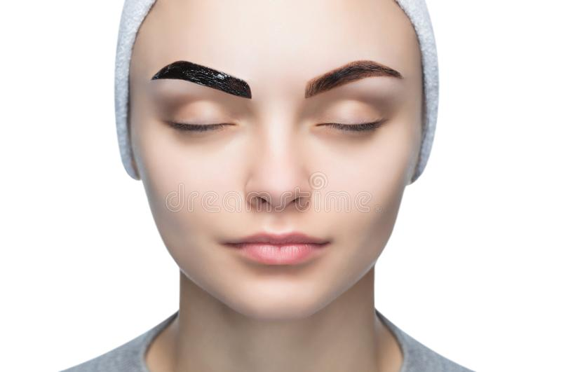 El retrato de una mujer con las cejas hermosas, bien arregladas, artista de maquillaje aplica la alheña de la pintura en las ceja fotografía de archivo libre de regalías