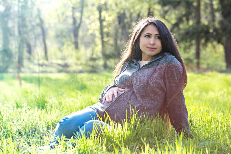 El retrato de una mujer embarazada se está sentando en un prado imagenes de archivo
