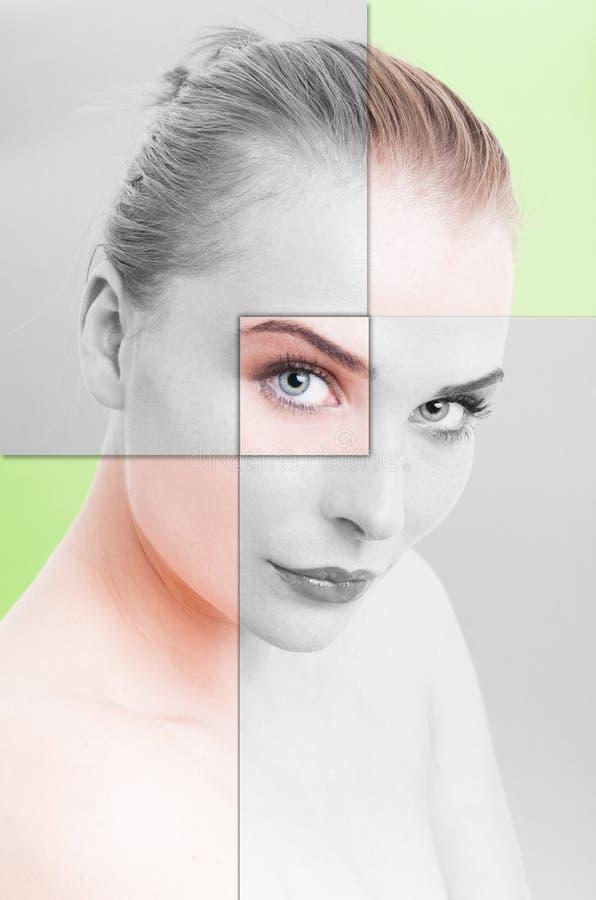 El retrato del collage de la piel perfecta de la mujer con el filtro se aplicó fotos de archivo libres de regalías