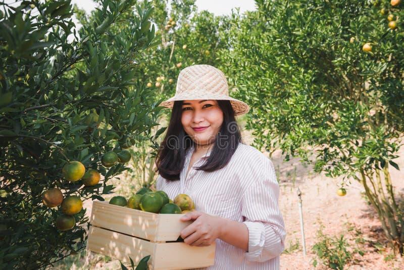 El retrato del granjero atractivo Woman es naranja de la cosecha de la cosecha en la granja orgánica, muchacha alegre en la emoci imagen de archivo libre de regalías