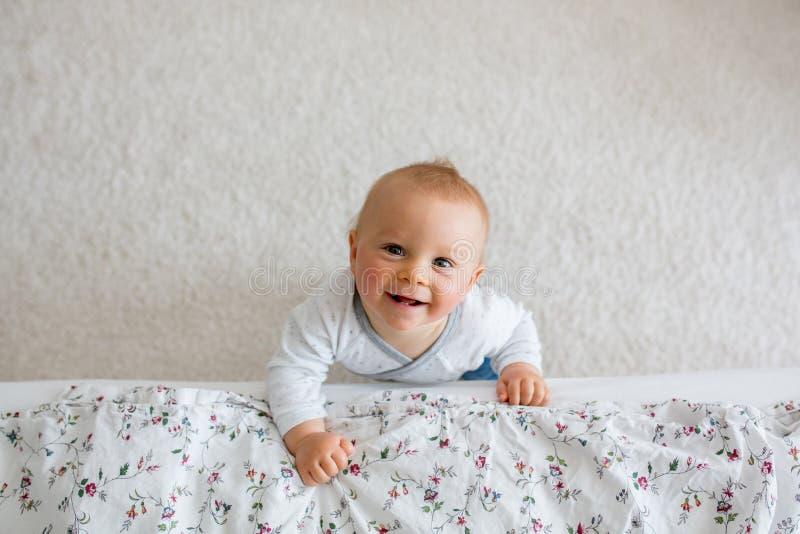 El retrato del pequeño niño lindo del niño tiró desde arriba, bebé fotos de archivo
