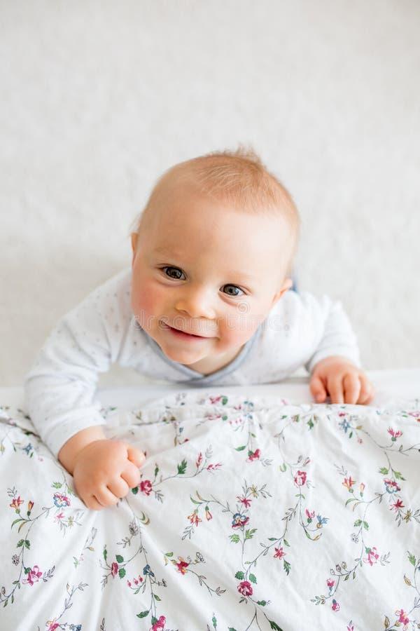 El retrato del pequeño niño lindo del niño tiró desde arriba, bebé foto de archivo libre de regalías