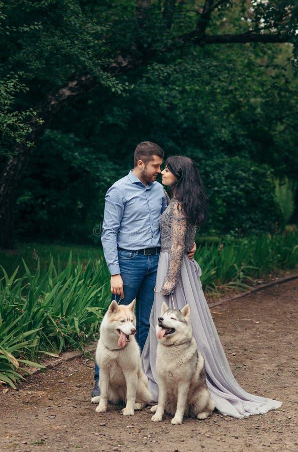 El retrato integral de los pares elegantes adorables felices con dos perros esquimales durante su paseo en primavera parquea Muje foto de archivo libre de regalías
