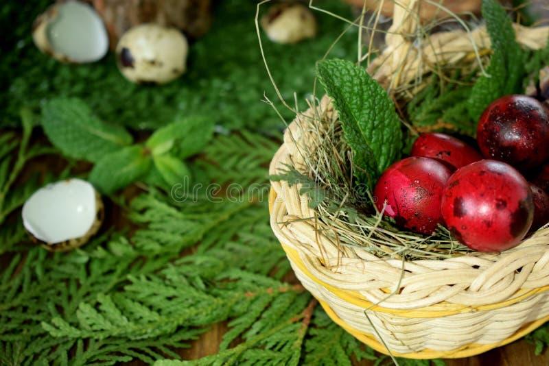El rojo coloreó los huevos de codornices en una cesta de mimbre Cáscaras y tocones en el fondo fotos de archivo libres de regalías