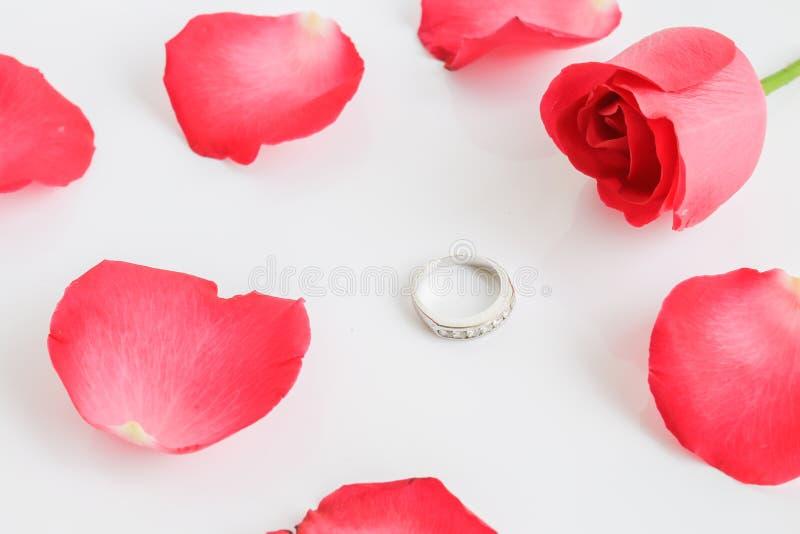 El rojo se levantó con el anillo fotos de archivo