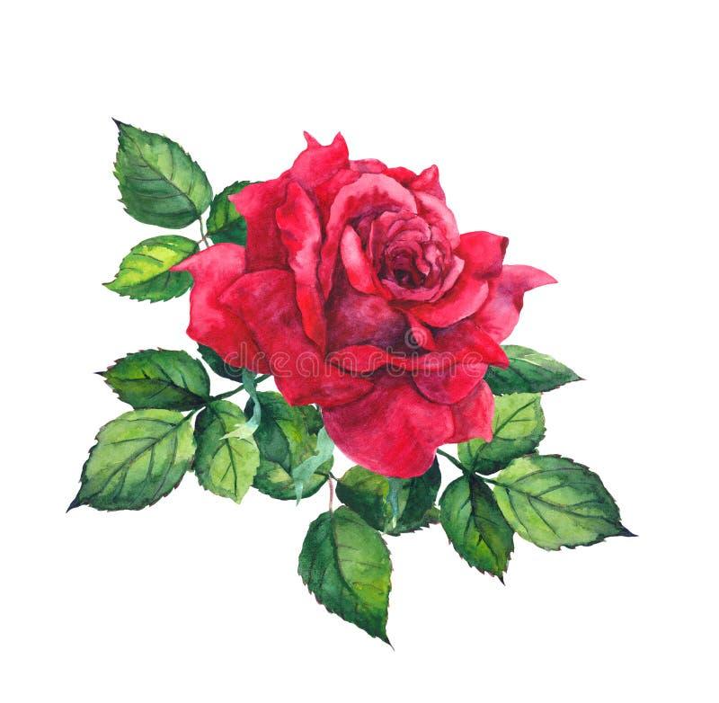 El rojo se levantó con las hojas Acuarela para casarse, tarjeta de fecha de la reserva libre illustration