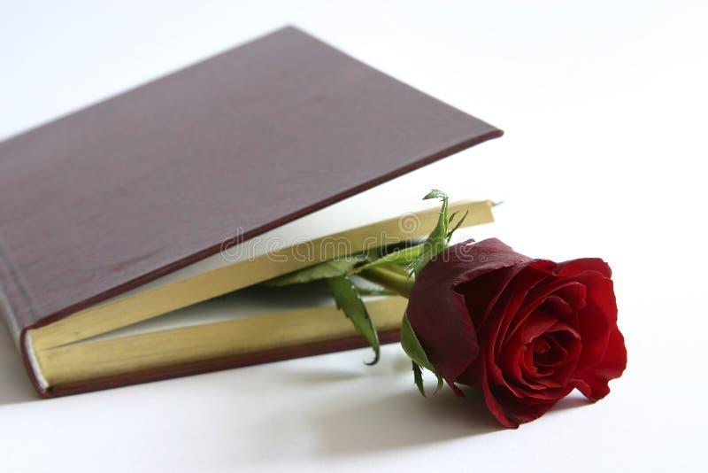 El rojo se levantó en un libro foto de archivo libre de regalías