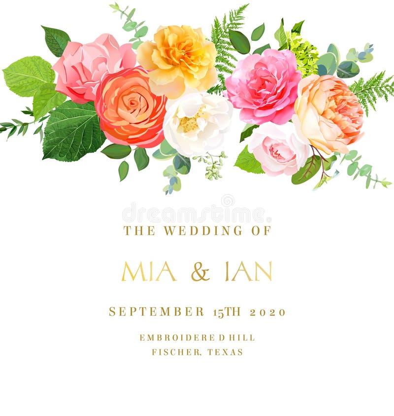 El rosa, rosa amarilla, fucsia, ranúnculo anaranjado, jardín del juliet subió stock de ilustración