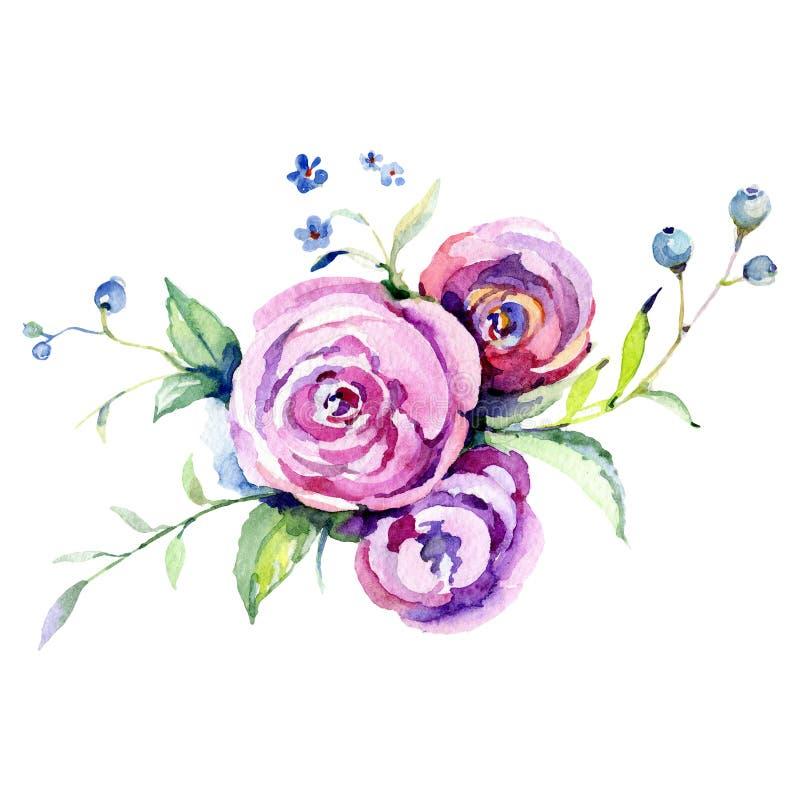 El rosa subió flor botánica floral Sistema del ejemplo del fondo de la acuarela Elemento aislado del ejemplo del ramo stock de ilustración