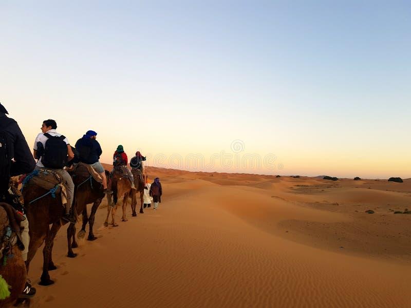 El Sáhara mágico fotos de archivo