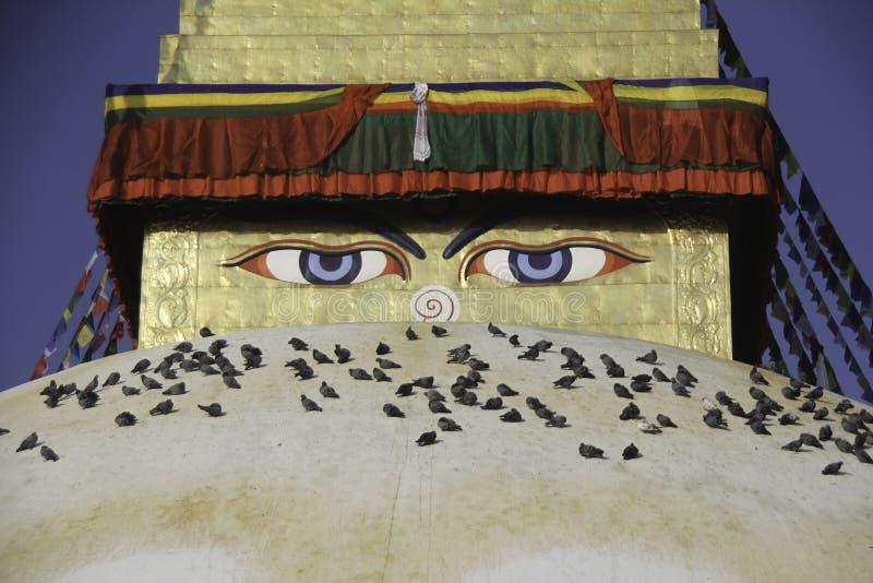 El símbolo de la paz es Buda Está lugar Boudhanath donde uso budista de la gente de hacer alrededor a su señor Buda imagenes de archivo