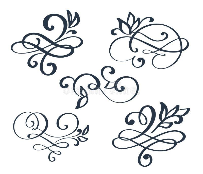 El símbolo dibujado mano determinada de los elementos de la caligrafía del separador del flourish del vintage ligado, se une a, p ilustración del vector