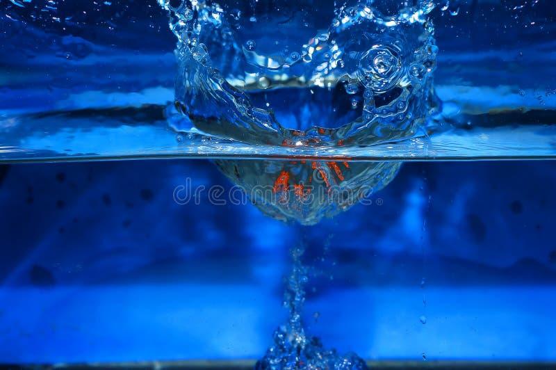 El salpicar anaranjado en el fondo del azul del agua imagen de archivo libre de regalías