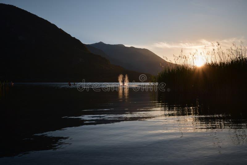El saltar del hombre joven del agua en una puesta del sol hermosa foto de archivo