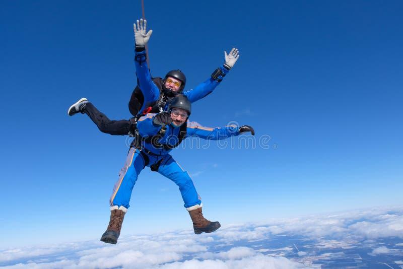 El saltar en caída libre en tándem Dos individuos están en el cielo azul fotos de archivo