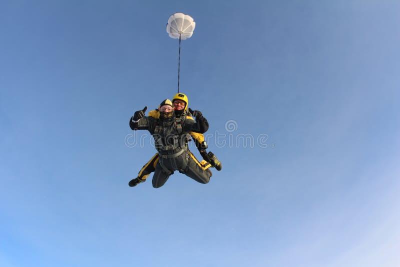 El saltar en caída libre en tándem Los Skydivers están volando sobre las nubes blancas fotografía de archivo