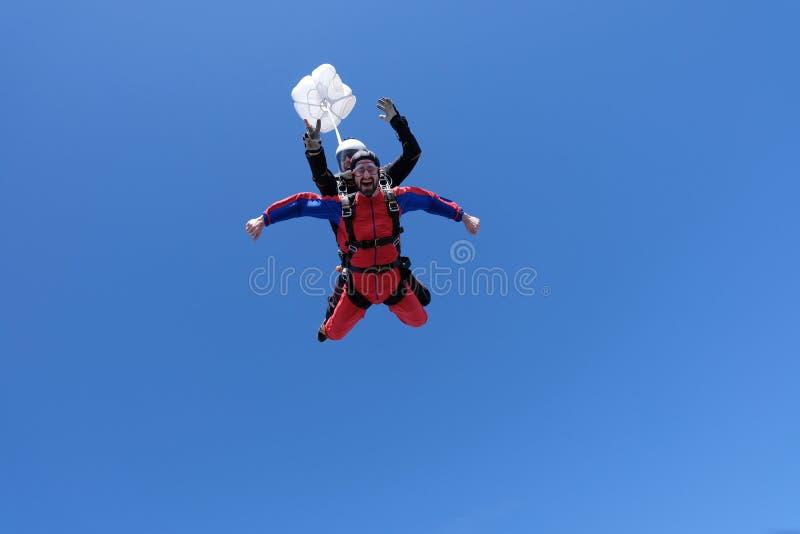 El saltar en ca?da libre en t?ndem Dos hombres felices est?n aterrizando imágenes de archivo libres de regalías