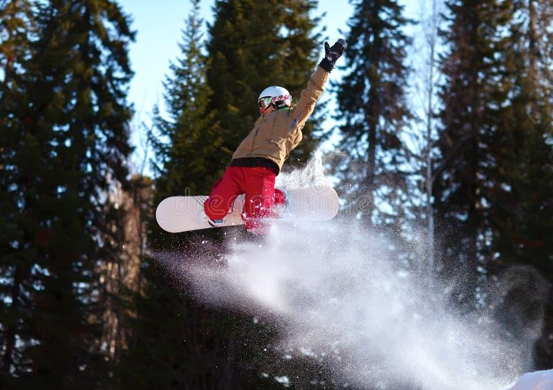 El salto del Snowboarder fotografía de archivo libre de regalías