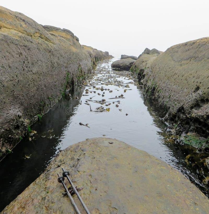 El salto grande necesitó sobre este canal de la oleada en la costa oeste Trai fotos de archivo