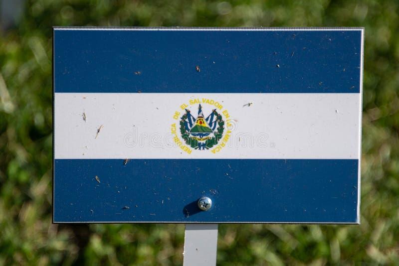 El Salvador flagga som isoleras på grönt gräs arkivbilder