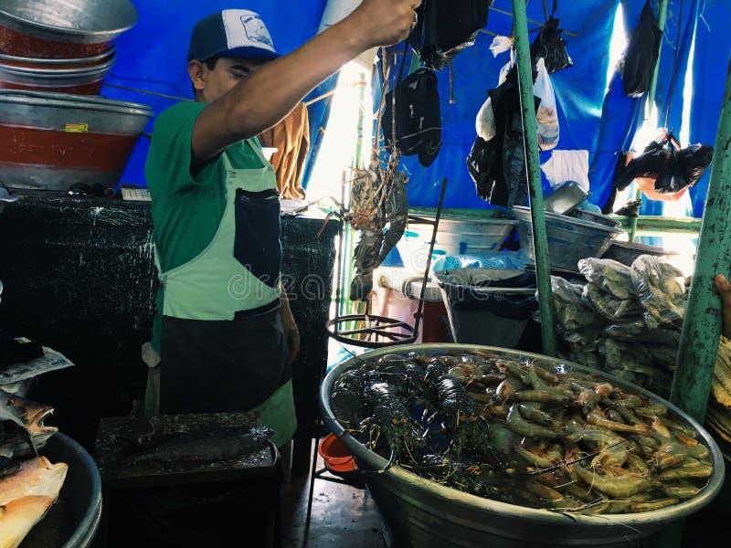 EL SALVADOR LA LIBERTAD - MARS 4, 2017 Fiskmarknad, La Libertad Department av El Salvador på mars 4 royaltyfri foto