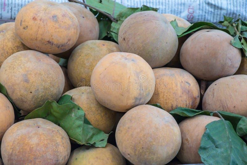 El santol o el cottonfruit del koetjape de Sandoricum es una fruta tropical producida en Asia sudoriental fotografía de archivo