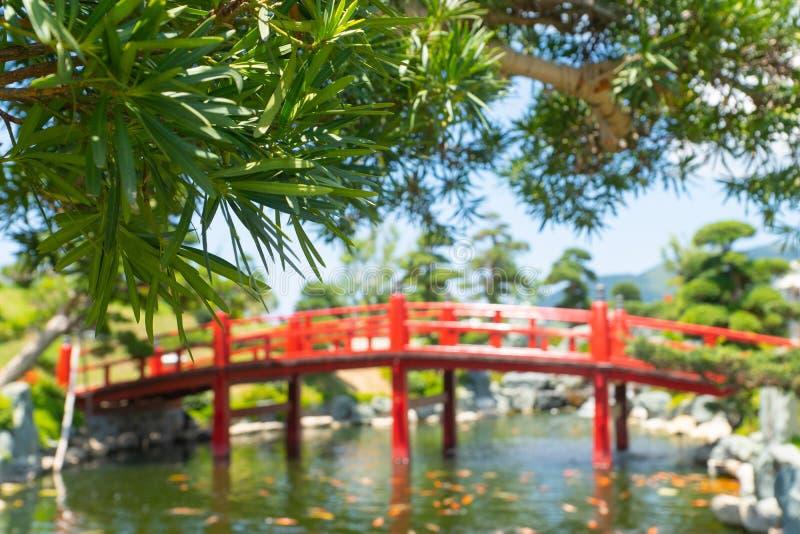 El sauce se va en el jard?n del estilo japon?s, puente de madera rojo borroso fotografía de archivo
