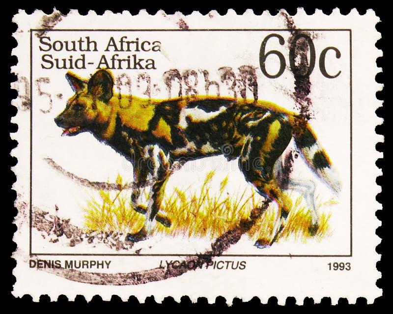 El sello de póster impreso en Sudáfrica muestra a Perro Salvaje Africano (Lycaon pictus), serie Definitives Endangered Animals, a foto de archivo libre de regalías