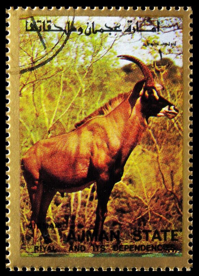 El sello de Postage impreso en Ajman (Emiratos Árabes Unidos) muestra Roan Antelope (Hippotragus equinus), Mammals, serie de gran fotografía de archivo