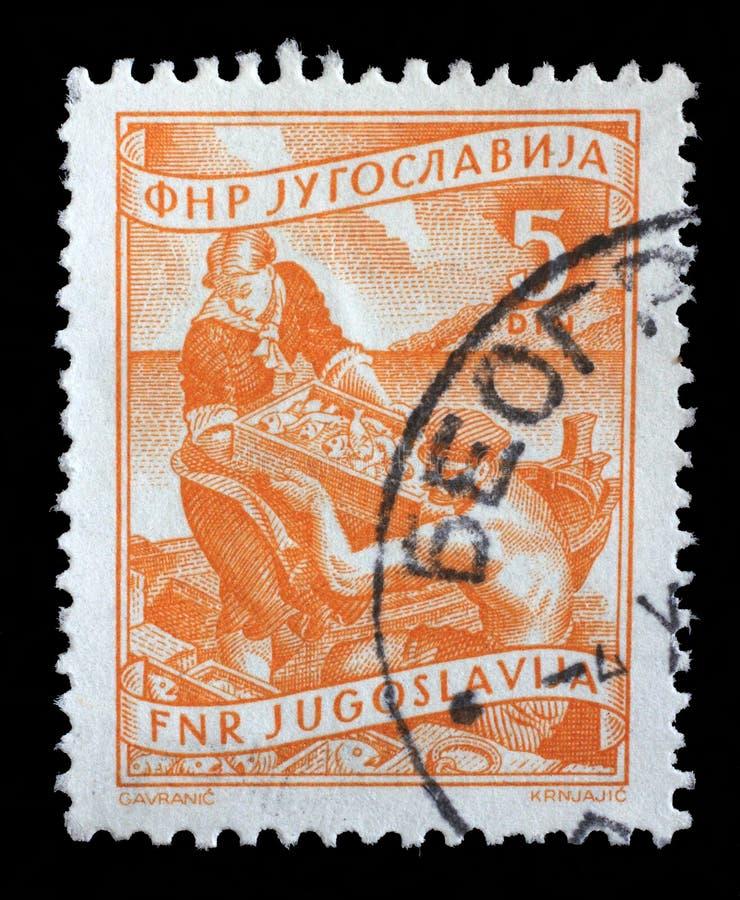 El sello impreso en Yugoslavia muestra mientras que la mujer ayuda a un pescador a descargar pescados imagenes de archivo
