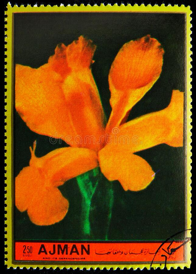 El sello postal impreso en Ajman (Emiratos Árabes Unidos) muestra a Iris, Flores: imagen de archivo